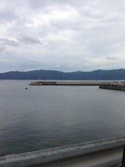小浜・阿納~犬熊周辺でエギング 昼過ぎにアオリイカ連続2ヒット