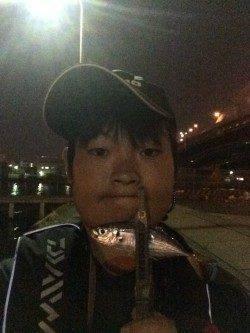 大阪南港 常夜灯周りでのアジング