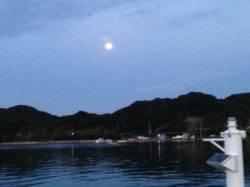 田辺・内之浦港にて 綺麗な月の明かりの中キビレの釣果