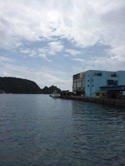 勝浦漁港 ベイトタックルでオオモンハタの小気味良い引を味わえました