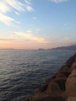 スプリットリグでアジをゲット 淡路島・古茂江周辺にて豆アジング