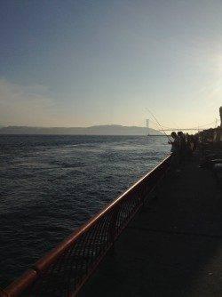 平磯海づり公園 胴突仕掛けの探り釣りでカワハギなど