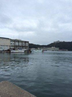 勝浦漁港でライトソルトゲーム♪ オオモンハタをキャッチ