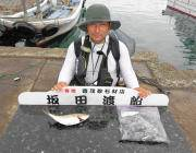 黒島の磯 アオリイカ新子とシオの釣果