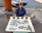 湾内の筏 コーンとアケミ丸貝でチヌ・アイゴ・ヘダイ