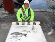 湾内の筏・黒島の筏 アケミの丸貝とオキアミでチヌの釣果