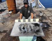 黒島の磯 ヤエン&エギングでアオリイカ