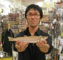 天橋立の投げ釣りでジャンボキス30.2cm