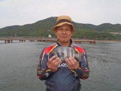 須磨海づり公園 落とし込みでサンバソウの釣果