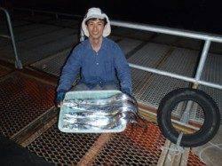 須磨海づり公園 タチウオテンヤでタチウオの釣果