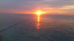 平磯海づり公園 カンダイ・カワハギ・ガシラなどで満足できました