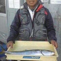 岸和田一文字 メジロ&ブリの釣果