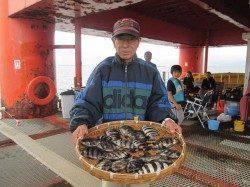 尼崎市魚つり公園 サヨイやサンバソウにメジロの姿も
