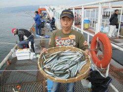 今年はサヨリの当たり年!尼崎市立魚つり公園