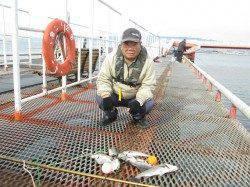 ノマセ好調の尼崎魚つり園 公園記録の97cm・12.2kgのスーパーメタボブリ