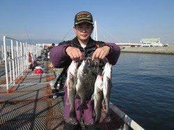 尼崎市立魚つり公園 エビ撒きにチャレンジしたいなら今ですよ!