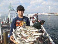 尼崎市魚つり公園 ウキ釣りでセイゴ17尾の釣果の方も