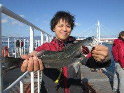 尼崎市立魚つり公園 セイゴ今日も超高活性 エビ撒きハネ釣りするなら今!