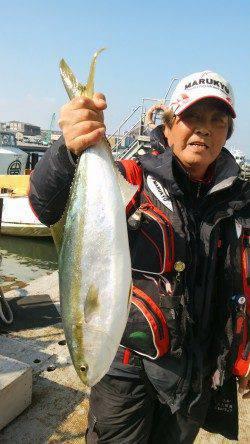 岸和田一文字 沖の北のノマセでメジロ、旧の赤灯台のウキ釣りでスズキ