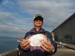 和歌山北港魚つり公園 チャリコ28cmの釣果