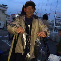 マリーナシティ海釣り公園 紀州釣りでチヌの釣果