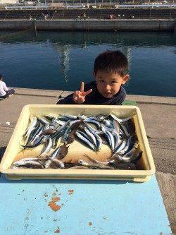マリーナシティ海釣り公園、サビキでイワシ大漁♫