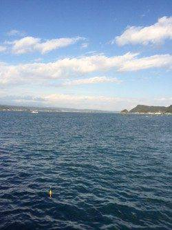 串本港ショアジギング 地磯は強風で釣りにならず湾内でモンゴイカ釣れました