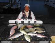 黒島の筏 魚種豊富な釣果出てます☆