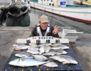 黒島の筏 チヌ45cm・メジロ60cmなど良型釣れています
