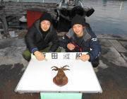 ヤエンでのアオリイカ釣果 黒島の筏で1.0kg、磯で0.7kg