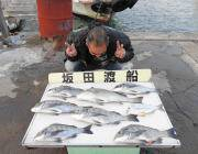 黒島の筏でチヌ〜45cm6匹とコロダイ51cm 磯ではグレ・ハマチの釣果