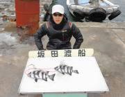 黒島の磯の底物釣果 サンバソウを2枚