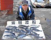 鷹島のカンドリ グレ20~35㎝ 24匹!