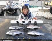 黒島の筏 シラサでマダイ4枚、オキアミで良型チヌなど