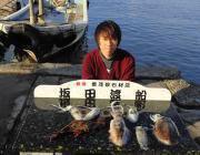 黒島の磯 ヤエンでアオリイカ0.8㎏のいいサイズも釣れています