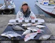 黒島の筏 チヌ・マダイ・マゴチなど良型の魚が多彩に釣れました