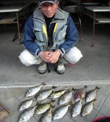 有田の磯 フカセ釣りでアイゴ&ウマヅラ