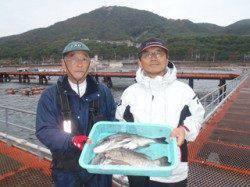 須磨海釣り公園 フカセ仕掛けにチヌ45cm2尾