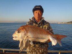 須磨海づり公園 ウキ流し釣りでマダイ70.9cm