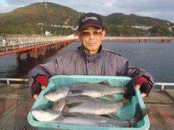 【27日】須磨海づり公園 シラサで良型ハネ3本の釣果