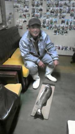岸和田一文字 旧赤灯でスズキ71cm、中波戸でガシラ・ソイも釣れています