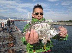 尼崎市立魚つり公園 小チヌ、セイゴは高活性 大物もくるので油断は禁物です