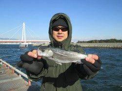 尼崎市魚つり公園 ハゼ釣りもオススメです