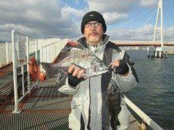 尼崎市立魚つり公園のエビ撒き釣り ハネ60cmに迫るサイズが増えてきました