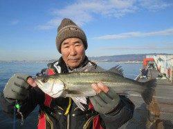 魚つり公園でウキ釣り ハネサイズの割合も増えてきました