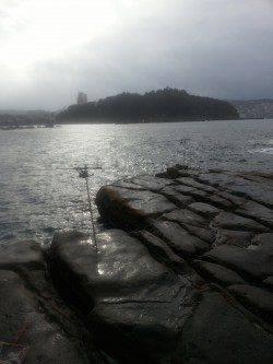 和歌山円月島前にヤエンでアオリイカ狙いに行ってきました