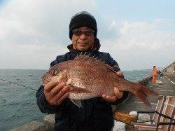 北港釣り公園 チヌ・グレ・サンバソウ・マダイの釣果