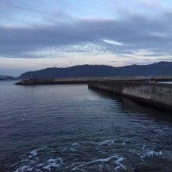 冬型が緩んだので日本海へ釣行 犬見~本郷周辺フカセ釣りでチヌ