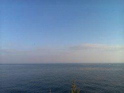 谷川漁港周辺アジング 潮の緩みで喰わせを入れてアジHIT