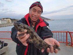 マムシをエサに投げ釣りでアイナメ36cm☆ 平磯海づり公園